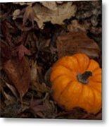Tiny Pumpkin Metal Print