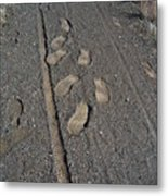 Tire Tracks And Foot Prints Metal Print