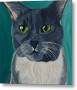 Titter, Cat Portrait Metal Print