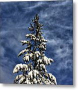 To Blue Horizons Metal Print