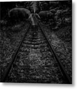 To Pace Metal Print