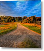 To The End Of The World Metal Print