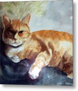 Toby The Best Cat Ever Metal Print