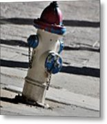Todays Art 1307 Metal Print