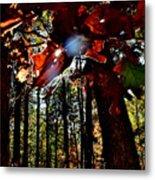 Todays Art 203 Metal Print