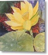 Tohopekaliga Lotus 2 Metal Print