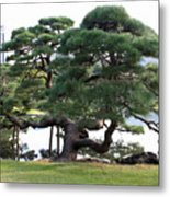 Tokyo Tree Metal Print