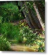 Toms Creek In Late Summer Metal Print