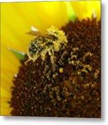Too Much Pollen Metal Print