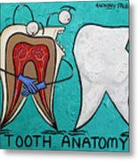 Tooth Anatomy Metal Print
