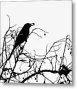 Top Bird Metal Print