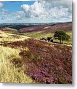 Top Withins On Haworth Moor Metal Print