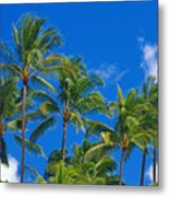 Tops Of Palms Metal Print