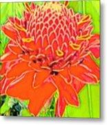 Torch Ginger Aloha Metal Print