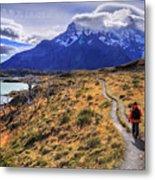 Torres Del Paine 21 Metal Print