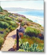 Torrey Pines Guy Fleming Trail Metal Print