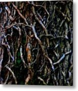 Totally Twisted In Yellow Springs Metal Print