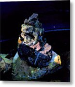 Totem Frogs Metal Print