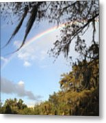 Touch A Rainbow  Metal Print