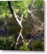 Touch Of Silence Metal Print