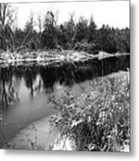 Touch Of Winter Black And White Metal Print