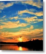 Touch The Wind Metal Print