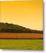 Touched By Golden Light - Battlefield Orchards Metal Print