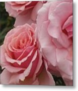 Tournament Of Roses Metal Print