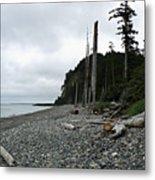 Tow Hill Haida Gwaii Bc Metal Print