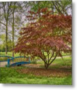 Tower Grove Arched Bridge And Maple Tree Dsc01828 Metal Print