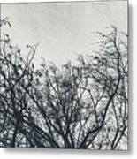 Traces Of Reality Metal Print