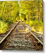 Track To Nowhere Metal Print by Greg Fortier