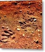Tracks On Mars Metal Print