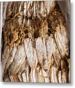 Traditional Sun Dried Squid In Kep Market Cambodia Metal Print