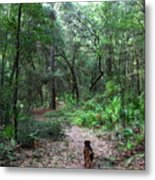 Trail Angel Metal Print