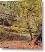 Trail In Tonty Canyon Metal Print