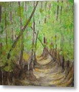 Trail In Woods Metal Print