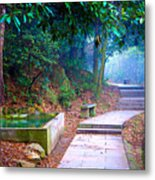 Trail In Woods Metal Print