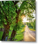 Trail Into Sunset Metal Print
