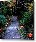 Trail Of 100 Jack-o-lanterns Metal Print