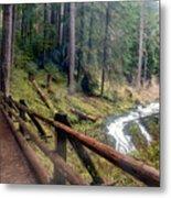 Trail Over Sol Duc Falls Bridge In Olympic National Park Metal Print