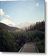 Trail Ridge Road Metal Print