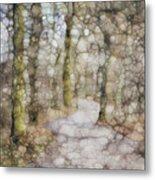 Trail Series Metal Print