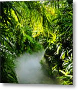 Trail To Adventure Metal Print