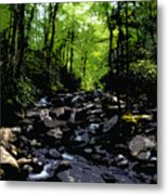 Trail To Chimney Top Metal Print
