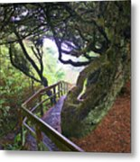 Trail To Copalis Beach Metal Print