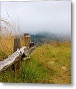 Trail With Coastal Morning Fog Metal Print