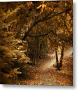 Trailing Autumn Metal Print