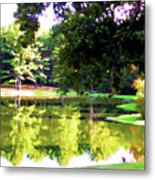 Tranquil Landscape At A Lake 1 Metal Print