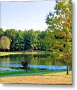 Tranquil Landscape At A Lake 6 Metal Print